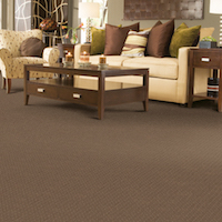 Carpet-Casual Luxury