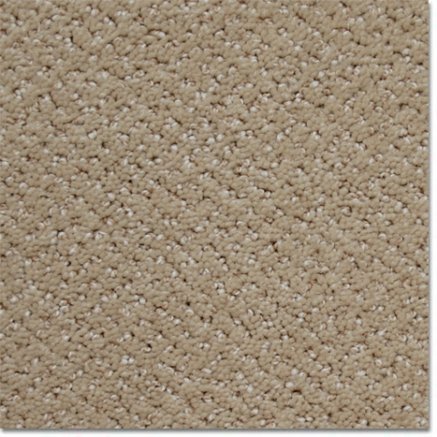 Atexflooring Ca Carpets Plush Carpet Casual Moment Ii