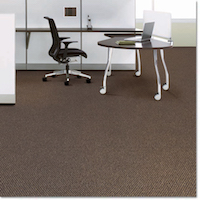 Carpet-Textra Plus ZL