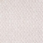 Cotton Canvas Swatch